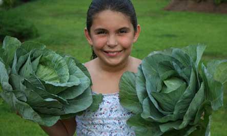 katie-cabbage