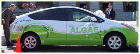 algae-car
