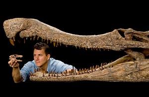 Investigador de la National Geographic sostiene la cabeza del DogCroc enmarcado por las fauces del  SuperCroc / Foto: AP/National Geographic