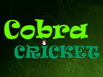 Cricket Cobra has the biggest appetite for cricket balls.