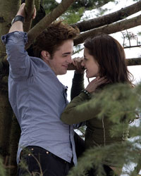 Robert Pattinson and Kristen Stewart in 'Twilight Saga,' Photo: Summit Entertainment