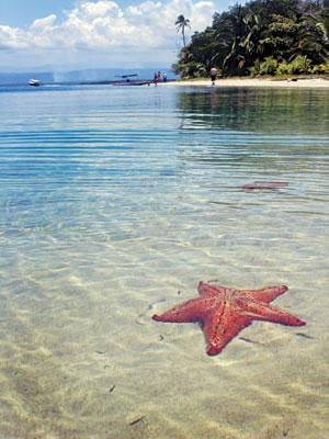 Las 10 mejores playas de América Estrellas