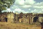 Ruins of Kilwa Kisiwani and Ruins of Songo Mnara, Dar es Salaam