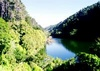 Zealandia: The Karori Sanctuary Experience