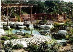 Image Result For Japanese Friendship Garden