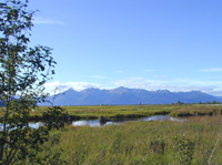 Potter's Marsh Bird Sanctuary, Anchorage