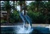 Siegfried & Roy's Secret Garden and Dolphin Habitat