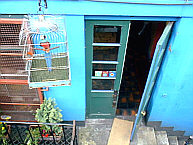 Blue Parrot Cantina, Edinburgh
