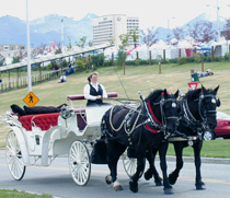 Horse Drawn Carriage Co, Inc., Chugiak