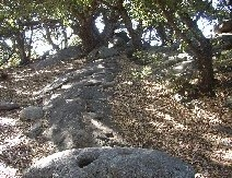 Palomar Mountain State Park, Palomar Mountain
