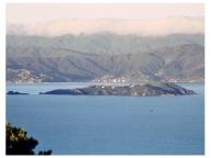 Somes Island, Lower Hutt