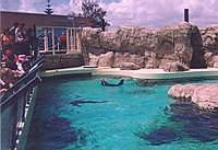 Aquarium of Western Australia (The), Perth