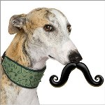 Dog Mustache Toy