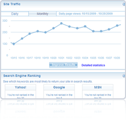 View detailed Site Traffic report
