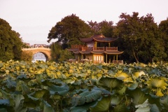 West Lake Cultural Landscape of Hangzhou (China)