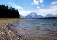 Grand Tetons Jenny Lake Campground