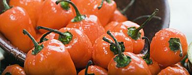 Habanero peppers (© Steve Hix/Somos Images/Corbis)