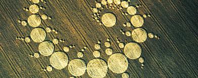 Crop circles (Digital Vision/Thinkstock)