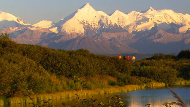 Top 5 activities in Denali National Park