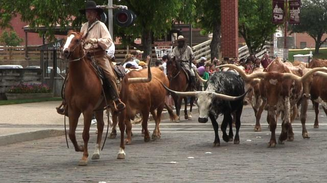 Experience Fort Worth's wild west