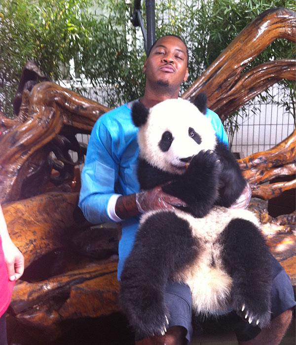 Carmelo Anthony Likes Pandas