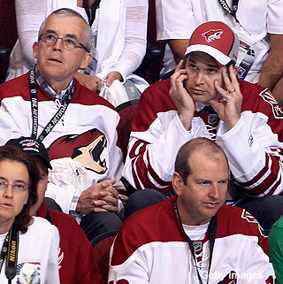 If Hulsizer's out, what are Phoenix Coyotes' ownership options?