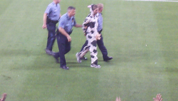 Guy dressed as a cow scores first goal at LiveStrong Sporting Park