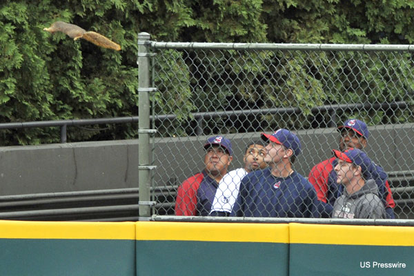 Create-a-Caption: Squirrel soars over Cleveland bullpen