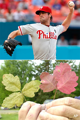 Poison oak has been Cole Hamels' biggest foe in 2011