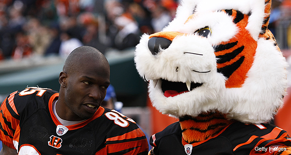 Who Dey? Bengals send email to season ticket holders saying that new CBA is done