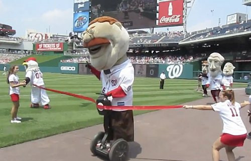 Teddy takes first, but DQ&#8217;d for using Segway in presidents race