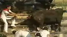 VIDEO: Bull jumps into crowd at bullfight