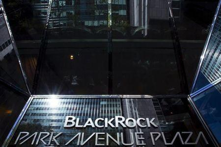 BlackRock to ask if companies spend cash from tax holiday on growth
