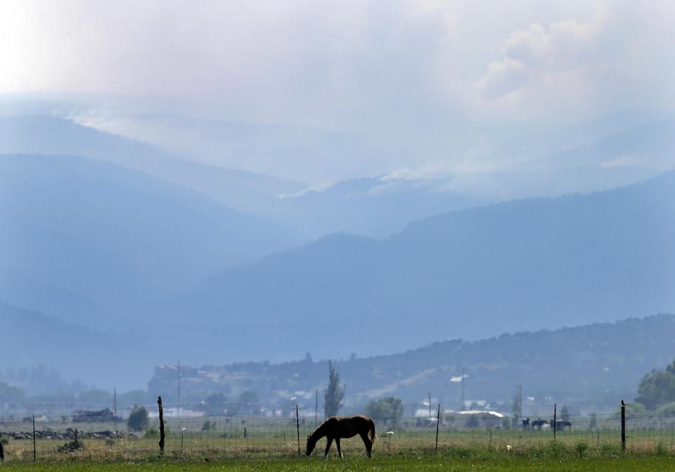 A horse grazes as smoke rises from a wildfire on Sunday, June 23, 2013, near Alpine, Colo. A large wildfire near a popular summer retreat in southern Colorado continues to be driven by winds and fueled by dead trees in a drought-stricken area, authorities said Sunday. (AP Photo/Gregory Bull)