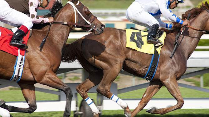 """In this image released by HBO, horses race in a scene from the HBO original series """"Luck.""""  HBO says a horse used for the racetrack drama """"Luck,"""" was euthanized after suffering an injury. The animal was being led to a Los Angeles-area racetrack stable when it reared and fell back Tuesday morning, suffering a head injury, according to HBO. The horse was euthanized at the Santa Anita Park racetrack in Arcadia, where """"Luck"""" is filming its second season.  It's the third horse death to occur during production of the series starring Dustin Hoffman and Nick Nolte. (AP Photo/HBO, Gusmano Cesaretti)"""