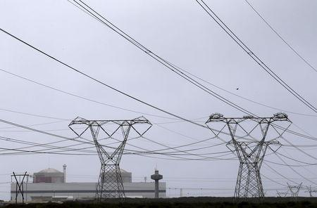 Pylons carry power from South Africa's Koeberg nuclear power plant near Cape Town