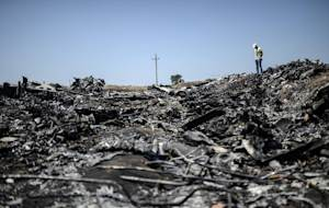 A man standing at the crash site of the Malaysia Airlines…