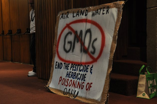 <p>               A sign from an environmental group pushing a bill proposing mandatory labeling of genetically modified food sits during a hearing in Honolulu on Monday, Feb. 4, 2013. (AP Photo/Anita Hofschneider)