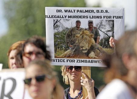 Protesters rally outside the River Bluff Dental clinic against the killing of a famous lion in Zimbabwe, in Bloomington, Minnesota