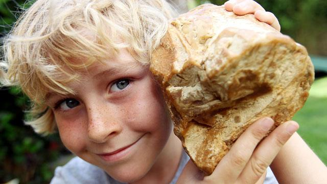 Boy Finds Ambergris, Valuable Fragrant Rock from Whale Poop, on Beach