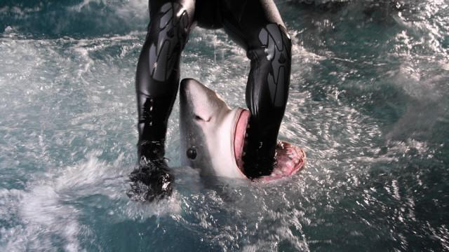 "A  reenactment of a woman being attacked from behind by shark on ""Rogue Sharks."""