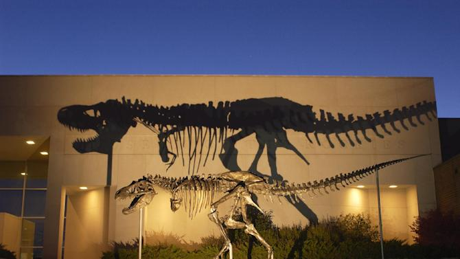 """This undated handout photo, taken in 2001, provided by the Museum of the Rockies shows a bronze cast of the Tyrannosaurus rex skeleton known as the Wankel T.rex, in front of the Museum of the Rockies at Montana State University in Bozeman, Mont. The Smithsonian's National Museum of Natural History is acquiring its first full Tyrannosaurus rex skeleton for eventual display in a new dinosaur hall planned for the National Mall. The museum announced Thursday that it reached a 50-year loan agreement with the U.S. Army Corps of Engineers to display one of the most complete T. rex specimens ever discovered. It's known as the """"Wankel T. rex.""""The rare fossil was found in 1988 by rancher Kathy Wankel on federal land near the Fort Peck Reservoir in eastern Montana. Between 1990 and 2011, the fossil was loaned to the Museum of the Rockies in Bozeman, Mont. The T. rex will be the centerpiece of a new dinosaur hall scheduled to open in 2019. Only a few museums display such nearly complete skeletons. (AP Photo/Museum of the Rockies)"""