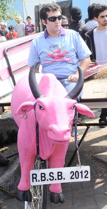 Imran goes racing on a pink bull