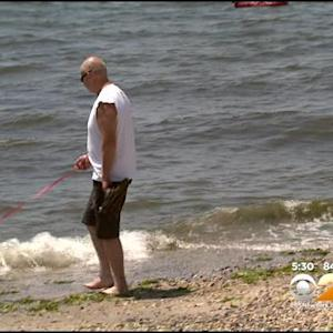 New Restrictions At Manasquan Waterfront Have Dog Owners Seeing Red