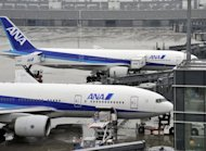 All Nippon Airways (ANA) planes are parked at Tokyo airport, 2010. Japan&#39;s All Nippon Airways (ANA) set the price for its huge new share offering in a move aimed at raising more than $2 billion
