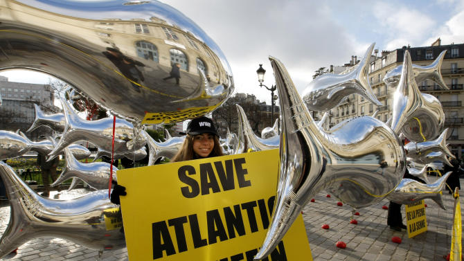 Tuna balloons are displayed by World Wide Fund For Nature (WWF) members in Paris, Friday, Nov. 26, 2010. Conservation group WWF teamed up with supermarket chains and restaurants Wednesday to press countries to set stricter fishing regulations for Atlantic bluefin tuna during an international conference in Paris. (AP Photo/Jacques Brinon)