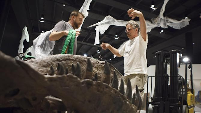 In a photo made May 15, 2012 Director Pete Larson of the Black Hills Institute of Geologic Research, right, discusses with artist Tomas Schneider  how he will use a forklift to hoist a Tyrannosaurus Rex fossil skeleton into place in the new Hall of Paleontology at the Houston Museum of Natural Science Tuesday, May 15, 2012. The exhibit that opens June 2 includes the only Triceratops skin ever found, and a T-rex with three fingers.   (AP Photo/Michael Stravato)