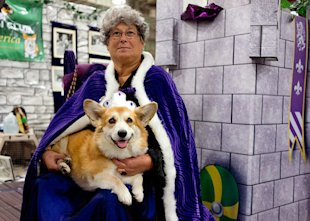 Queen Elizabeth and her Corgi, Epry, pose for photos.