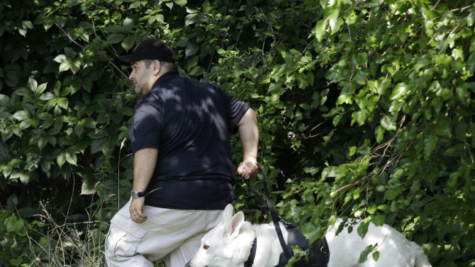 An investigator and his dog search a wooded area Sunday, July 21, 2013 near where three bodies were recently found in East Cleveland, Ohio. Searchers rummaging through vacant houses in a neighborhood where three female bodies were found wrapped in plastic bags should be prepared to find one or two more victims, a police chief said Sunday. (AP Photo/Tony Dejak)