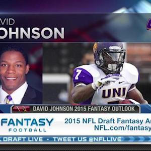 Arizona Cardinals running back David Johnson's fantasy outlook
